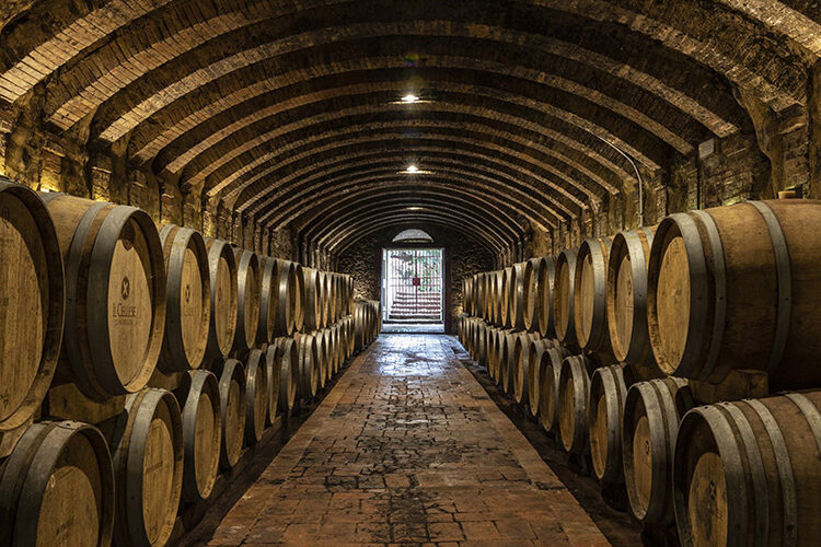 chianti, cellese winery, wine tours and wine tasting