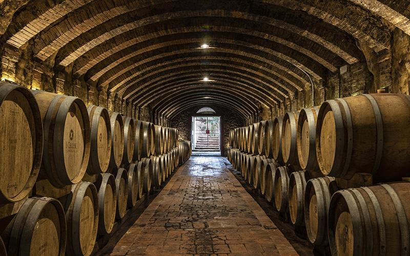 shore excursion, wine tours
