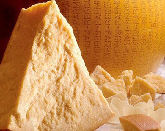 parmigiano cheese shore trip